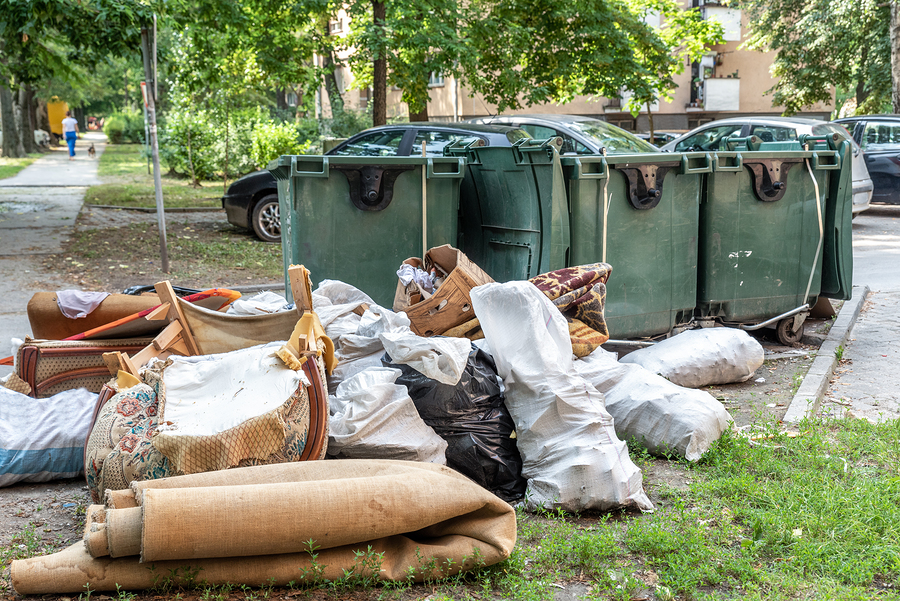 professional waste collection experts